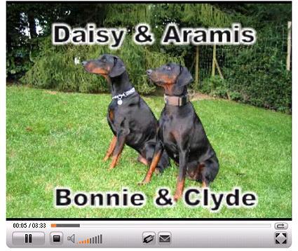 MOVIE Daisy und Aramis