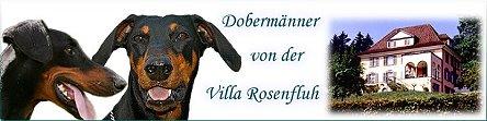 Banner-VillaRosenfluh-445x111